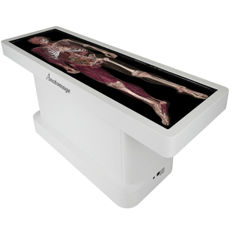 Anatomage_Table